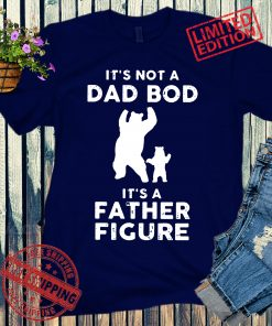 It's Not a Dad Bod It's a Father Figure, Funny Dad and Baby Bear, Fathers Day T-Shirt